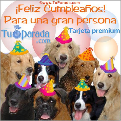 Feliz Cumpleaños!, Animales, tarjetas