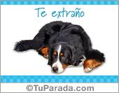 Tarjeta - Te extraño con perro acostado