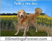 Protection of animals - Greeting ecards: Have a nice day ecard