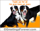 Protection of animals - Greeting ecards: Friends like you...