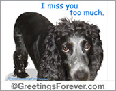 Protection of animals - Greeting ecards: I miss you ecard