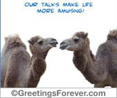 Ecards: Our talks make life...