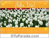 Día de la Primavera - Tarjetas postales: Saludos con tulipanes