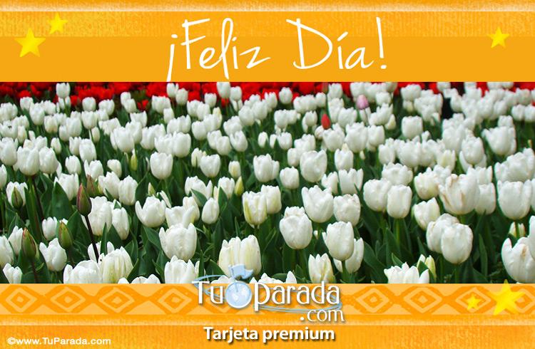 Tarjeta - Saludos con tulipanes