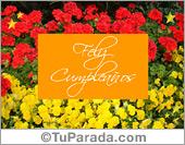 Tarjetas, postales: Feliz cumpleaños con flores