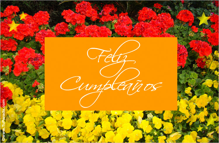 Feliz cumpleaos con flores Modelos de flores tarjeta digital