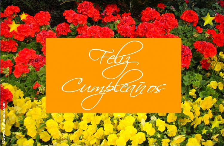 Feliz Cumpleaños Con Flores, Modelos De Flores, Tarjetas