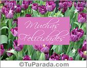 Tarjetas, postales: Felicidades con tulipanes lilas