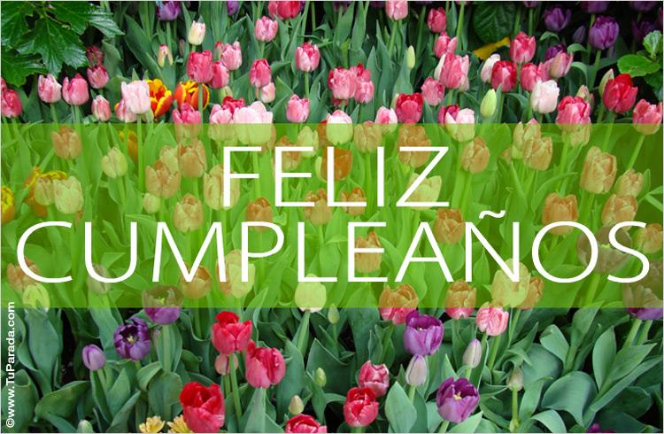 Flores De Feliz Cumple Anos Pictures To Pin On Pinterest