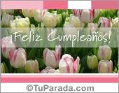 Tarjetas, postales: Tarjeta con tulipanes blancos