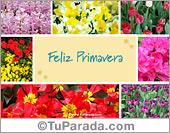 Día de la Primavera - Tarjetas postales: Tarjeta para la Primavera