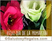 Tarjeta - Feliz Primavera con flores increíbles
