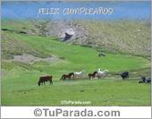 Paisajes - Tarjetas postales: Feliz Cumpleaños