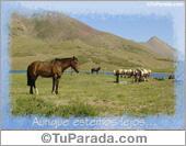 Paisajes - Tarjetas postales: Aunque estemos lejos...