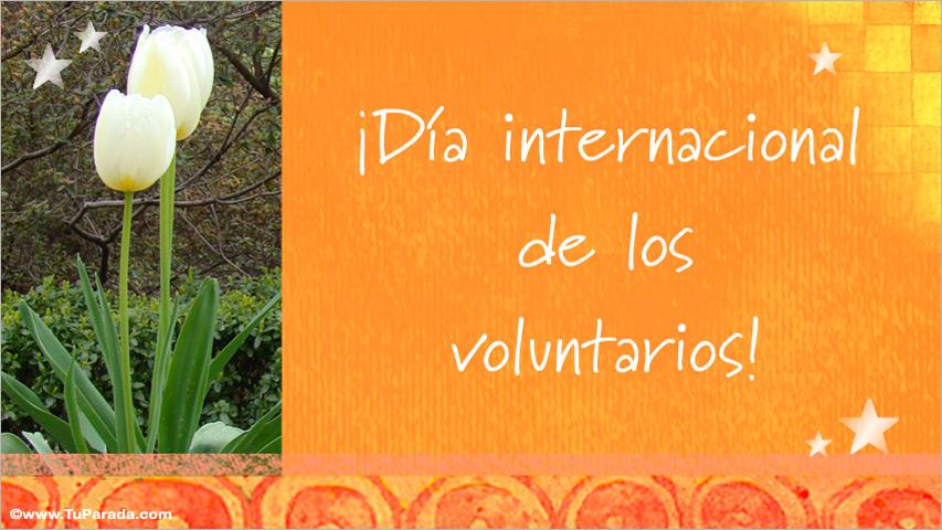 Tarjeta - Día internacional de los voluntarios