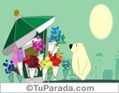 Día de la Mujer - Tarjetas postales: Flores en el día de la mujer.