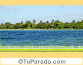 Foto de isla con palmeras
