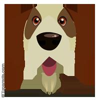 Imagen de perro
