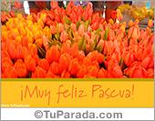 Tarjetas postales: Tarjeta de tulipanes para Pascua