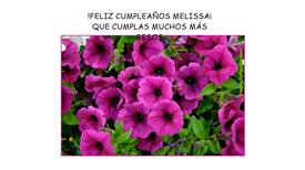 Tarjetas, postales: FELIZ CUMPLEAÑOS