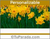 Tarjeta con flores amarillas