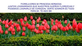 Tarjetas, postales: FIORELA MI PRINCESA HERMOSA