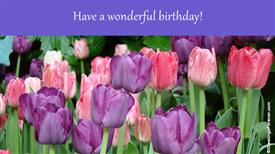 Ecards: A wonderful birthday