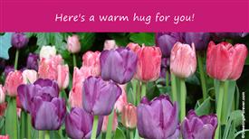 Ecards: A warm hug