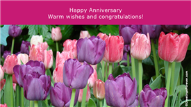 Greeting ecards: Anniversary