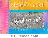 Amistad - Tarjetas postales: Todos juntos con pingüinos