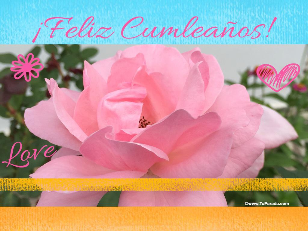 Imagen de feliz cumpleaños con flor, Frases de cumpleaños, tarjetas