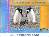 Cartões postais: Cartão de nascimento