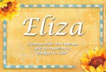 Name Eliza