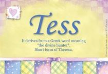 Name Tess
