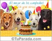 Tarjetas postales: Tarjeta de cumpleaños con perros