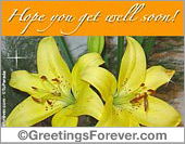 Get well ecards - Greeting ecards: Hoping you get well with these flowers!