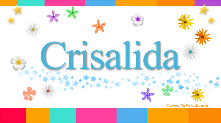Crisalida, imagen de Crisalida