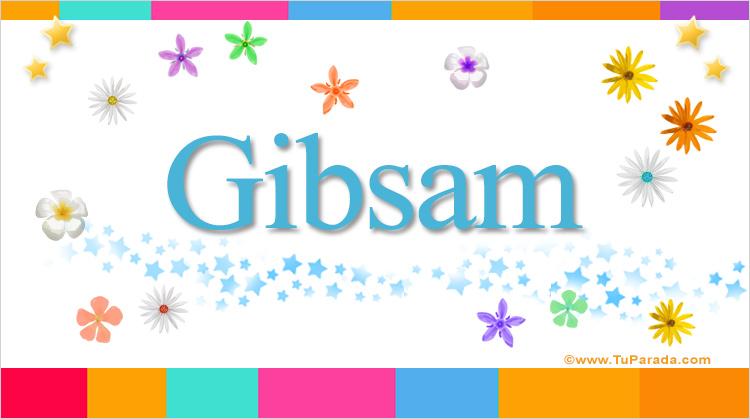 Gibsam, imagen de Gibsam