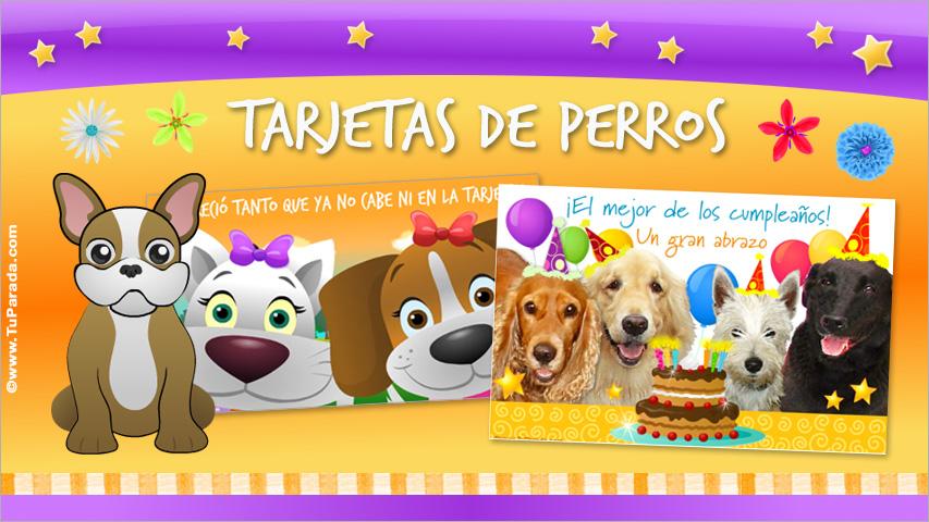 Tarjetas de Perros