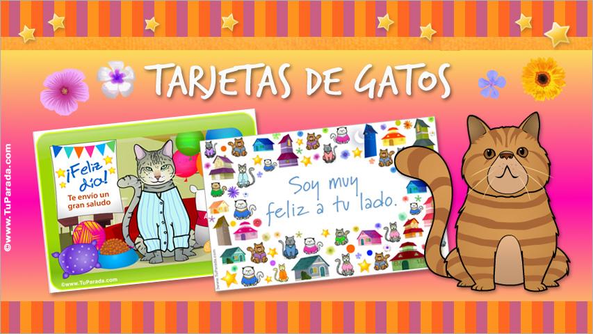 Tarjetas de Gatos