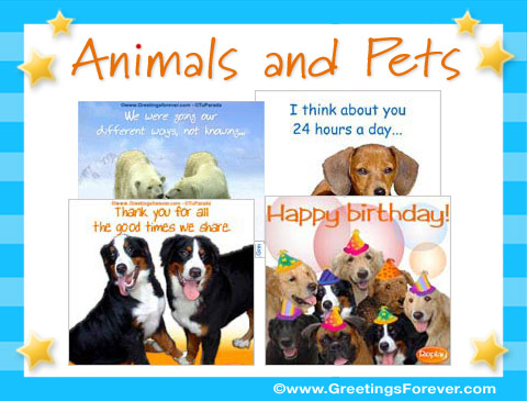 Animals and Pets ecards
