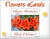 Greeting ecards: Flowers eCards