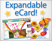 Greeting ecards: Expandable Push up