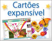 Cartões postais: Cartões expansível