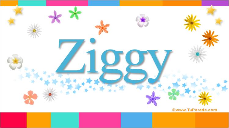 Ziggy, imagen de Ziggy