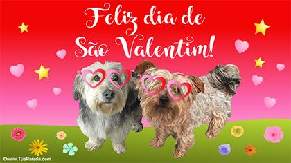 Cartão de Valentine especial para você