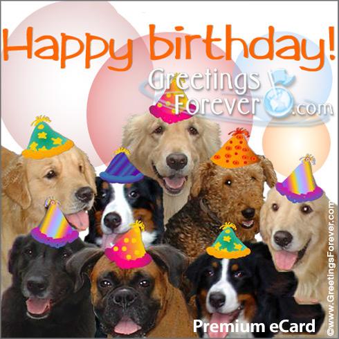 Ecard - Happy Birthday ecard