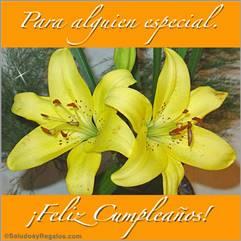 Para alguien especial con Liliums
