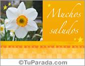 Tarjeta de saludos con flores