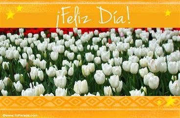 Saludos con tulipanes